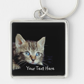 Kittens With Unbelievable Blue Eyes Keychain
