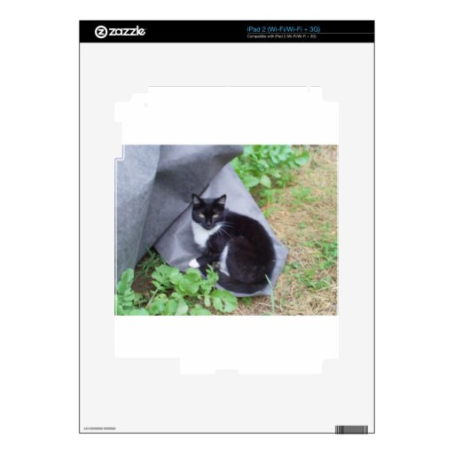 Kittie Love Decal For The iPad 2