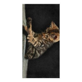 Kittie Photo Card