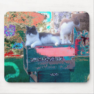 Kitties At Fairy Land Carney Mouse Mat