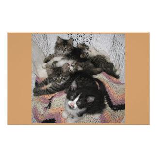 Kitties chair share stationery