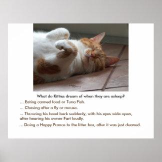 Kitties dream of Poster or Print