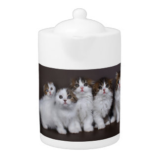 Kitties in a Row Porcelain Teapot