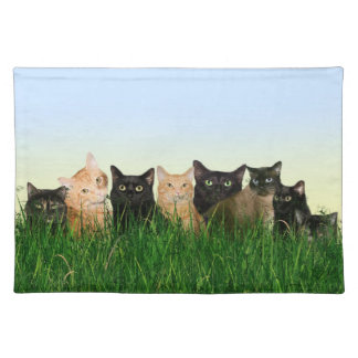 Kitties in grass cloth placemat