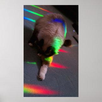 Kitties = Light & Love Poster