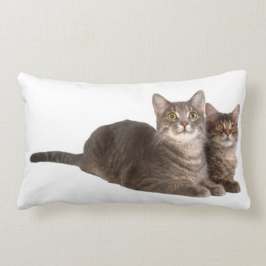 Kitties looking at you lumbar pillow