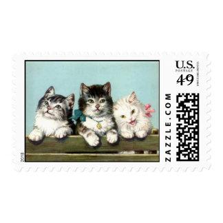 Kitties Postage Stamp