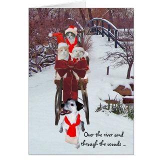 Kitties' Sleigh Ride Greeting Card
