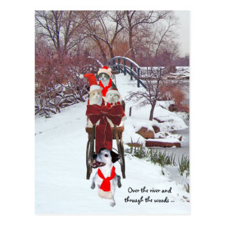 Kitties' Sleigh Ride Postcard