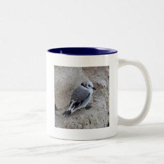 Kittiwake Chick Mugs