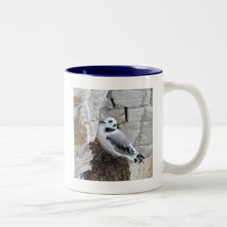 Kittiwake Chick Coffee Mugs