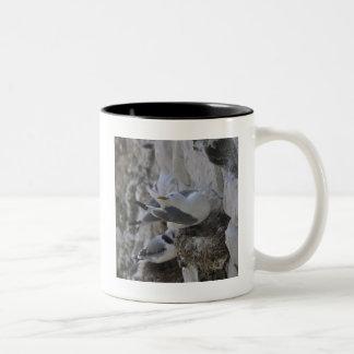 Kittiwake Coffee Mug