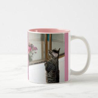 Kittten encuentra las flores en la taza de la
