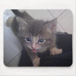 kittty mouse mat