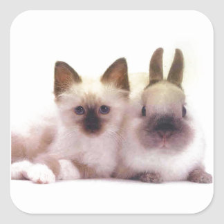 Kitty And Bunny Products Square Sticker