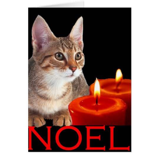 Kitty and candles card