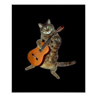Kitty and guitar poster