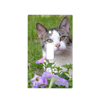 Kitty and the Petunias Light Switch Cover