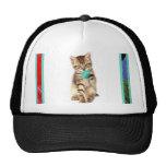 Kitty and Yarn Cap Hats