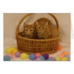 Kitty Basket Greeting Card