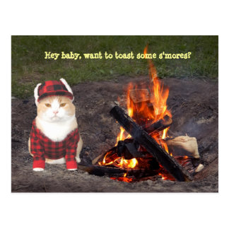 Kitty Campfire Postcard