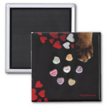 Kitty Candy Hearts Love Square Magnet