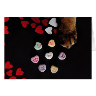 Kitty Candy Hearts Valentine's Day Card