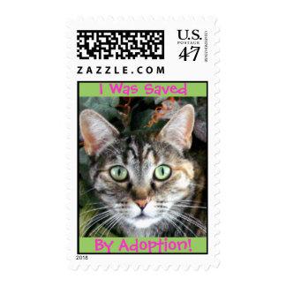 Kitty Cat Adoption Postage