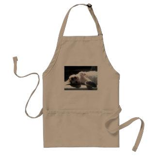 kitty cat apron! adult apron