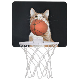 Kitty cat basketball mini basketball hoop