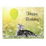 Kitty cat birthday postcard