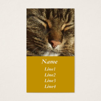 Kitty Cat Business Card
