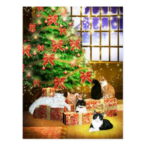 Kitty cat Christmas Post Cards