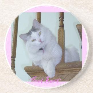 Kitty Cat Coaster