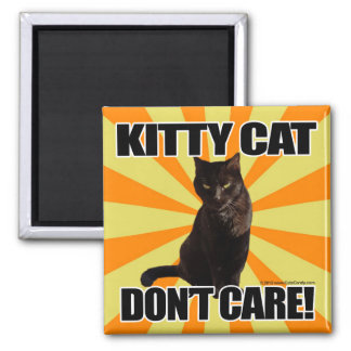 Kitty Cat Don't Care 2 Inch Square Magnet