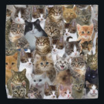 """Kitty Cat Faces Pattern Bandana<br><div class=""""desc"""">face, pussy, cat, cats, animals, funny, animal, grey, cute, puppy, kittens, pet, kitty, gray, kitten, little, """"cat breeds"""", looking, """"cute pictures"""", adorable, """"cute cat"""", feline, """"kitty cat"""", """"yellow eyes"""", """"cat face"""", """"orange cat"""", """" grey cat"""", """"funny kittens"""", """"pet cat"""", """"cat cute"""", """"baby kitten"""", """"cat head"""", """"cats and kittens"""", """"gray cat"""",...</div>"""