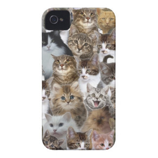 Kitty Cat Faces Pattern iPhone 4 Case-Mate Case