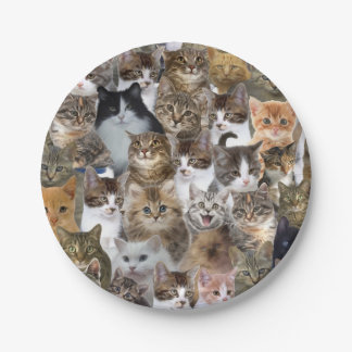 Kitty Cat Faces Pattern Paper Plate