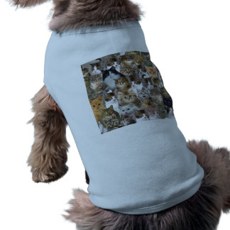 Kitty Cat Faces Pattern Shirt