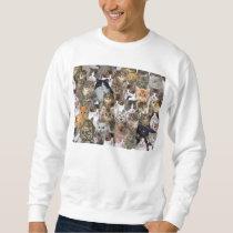 Kitty Cat Faces Pattern Sweatshirt