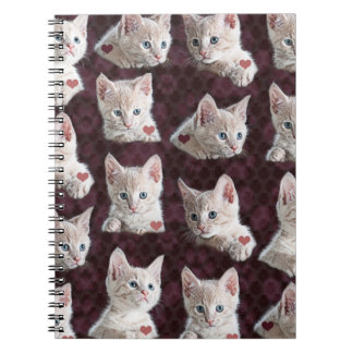 Kitty Cat Faces Pattern With Hearts Image Spiral Notebook