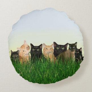 Kitty cat family round pillow