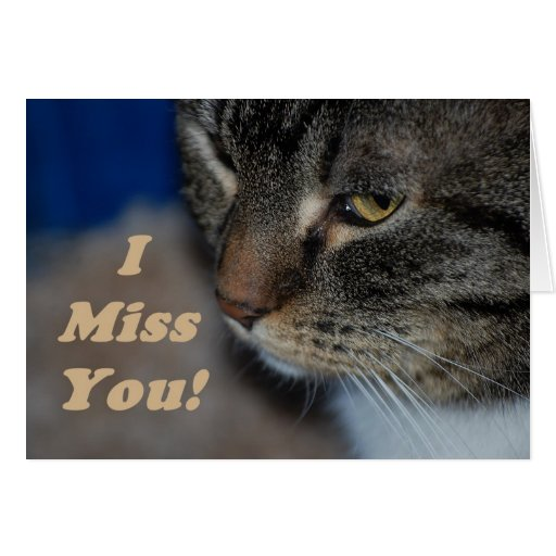 I Miss You All Pets Go to Heaven 77 Ways to Parent