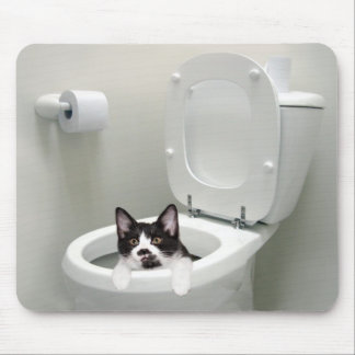 Kitty cat in toilet bowl mouse pad