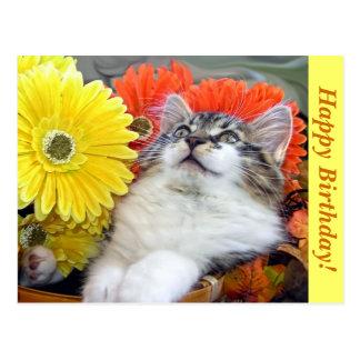 Kitty Cat Kitten Angel, Gerbera Daisy, Birthday Postcard