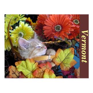 Kitty Cat Kitten Angel, Gerbera Daisy, Flower Pot Postcard