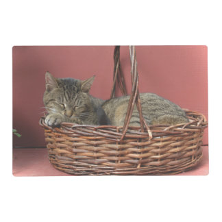 Kitty Cat Laminated Placemat