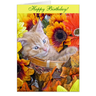 Kitty Cat leaning head to right, Sun Flower Basket Card