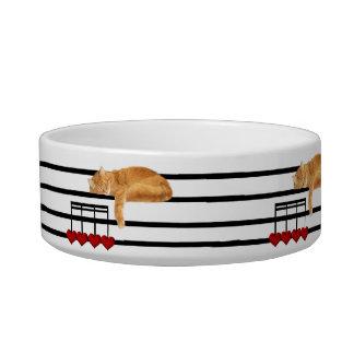 Kitty cat love notes pet bowl