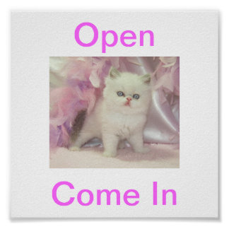 Kitty Cat Open For Business Sign